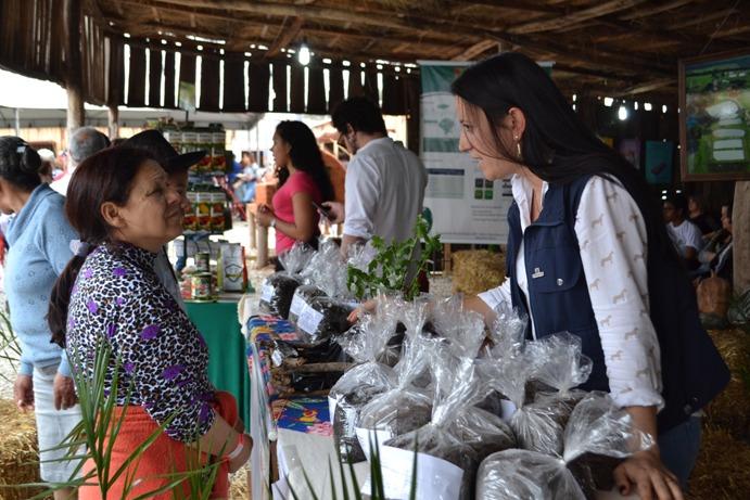 Técnicos prestam todo o auxílio aos agricultores familiares