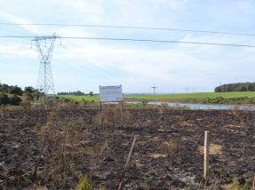 Apesar de grande parte do local ser queimada, chamas não geraram risco para a zona urbana