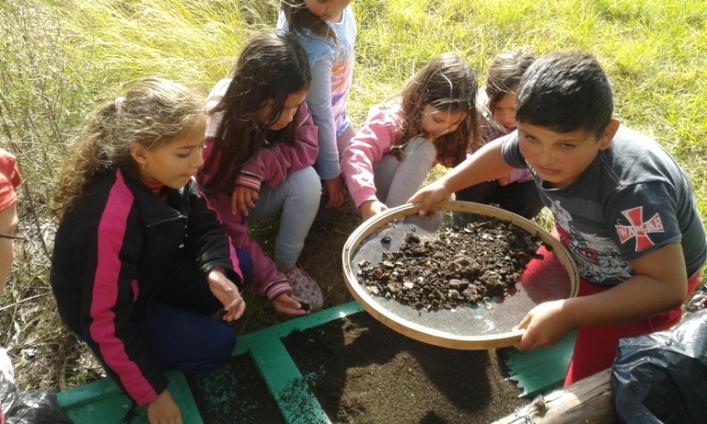 As crianças ajudam a peneirar e a embalar o húmus de minhoca