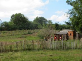 Área de 86,1 hectares foi identificada como território quilombola