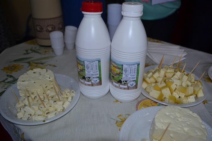Queijos e iogurtes são produtos originários das agroindústrias