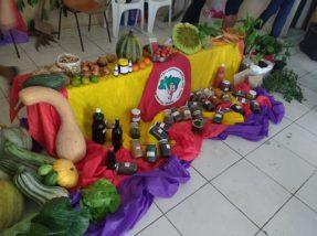 Associação trabalha na produção de alimentos orgânicos e qualidade de vida
