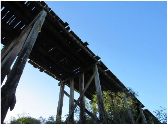 Ponte em madeiras apresenta diversos problemas estruturais