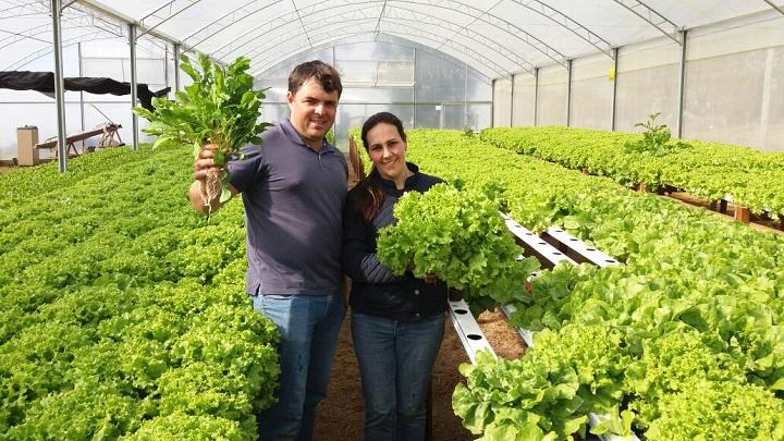Produção é uma novidade no município. Casal Noble  integra a parceria com a família Brendler